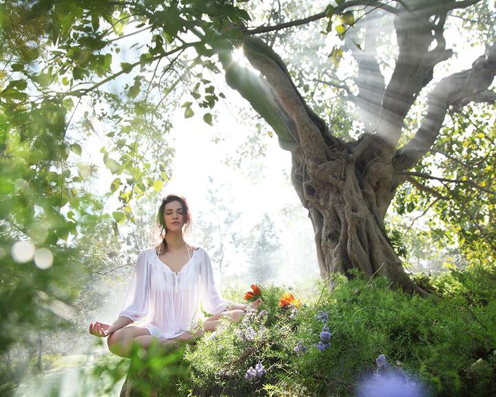 Wellness Retreat Resorts
