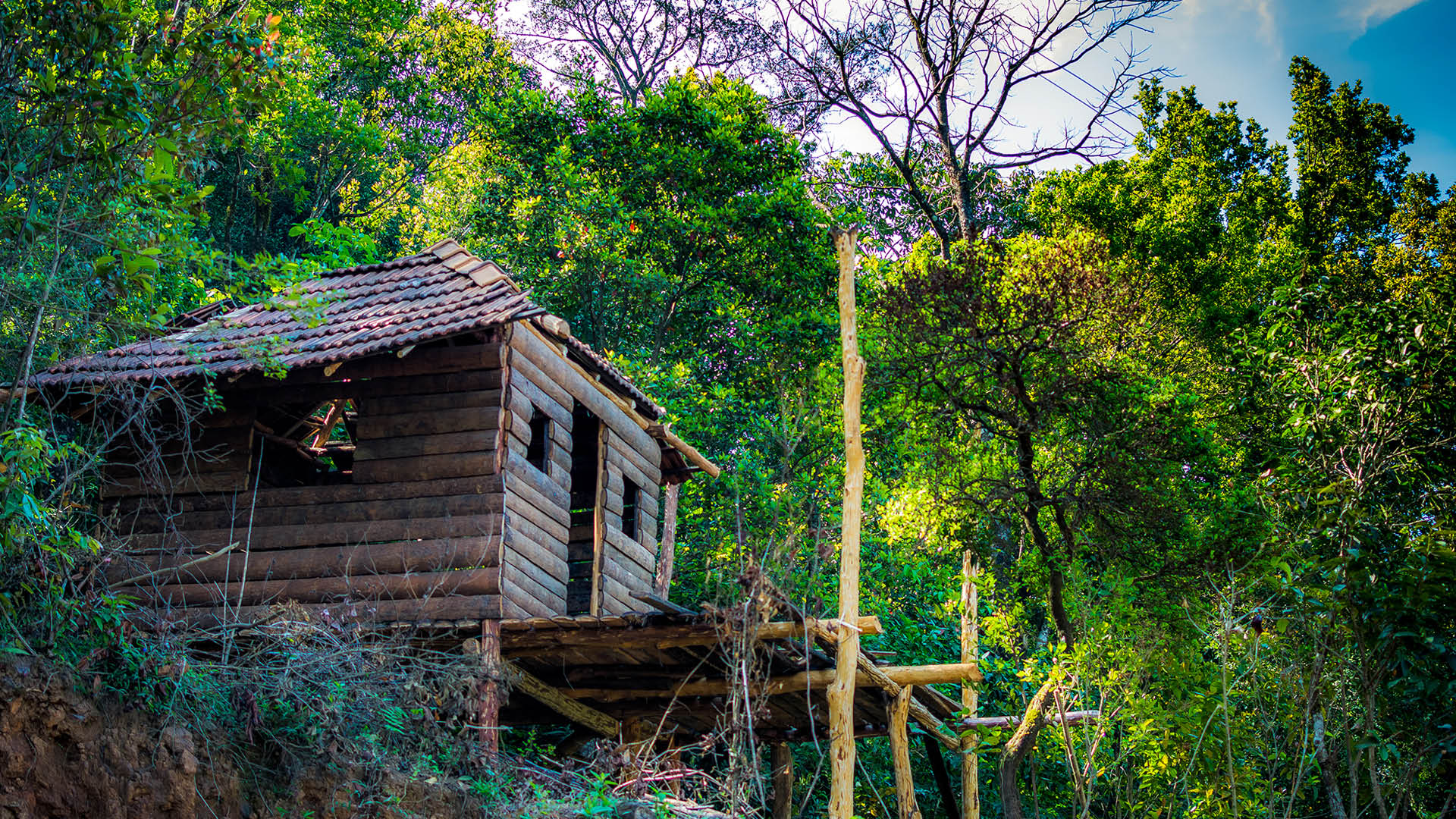 These Homestays In Coorg Will Make Sure You Have The Most Amazing ...