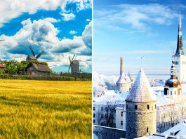 Summer In Estonia
