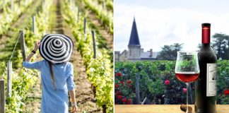 Stay in a French Vineyard in Bordeaux