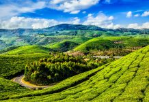 Hidden Gems Of Western Ghats