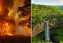 Brazil amazon wildfire burn