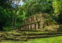 Explore Yaxchilan