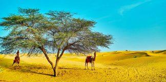 Jaisalmer stunning pictures