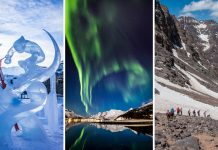 Unforgettable Winter Breaks