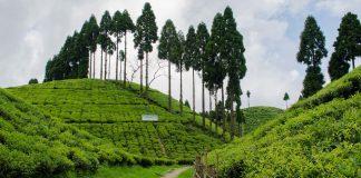 West Bengal Hills