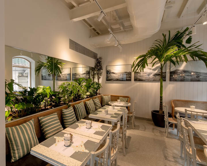 Kitchen Garden by Suzette Colaba