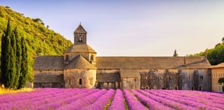 Sénanque Abbey in France