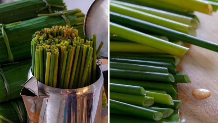 Vietnam Grass Straws