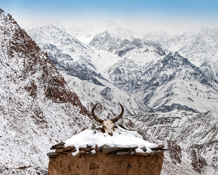 Winter Wonderland Ladakh