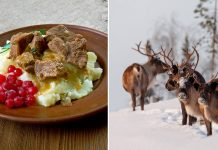 The Swedish Lapland
