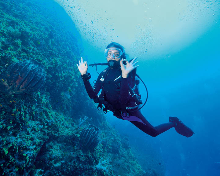 Diving Into Solitude