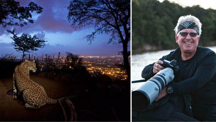 Wildlife Photographer Steve Winter
