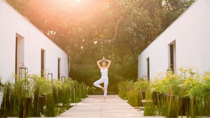 Wellness In Solitude