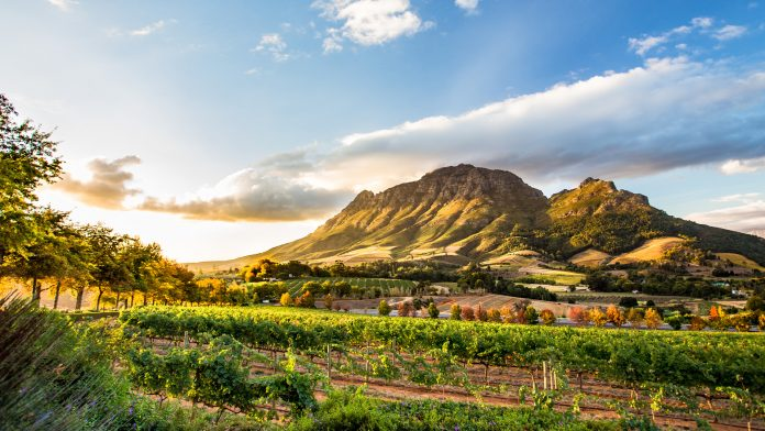South Africa Restores Domestic Travel