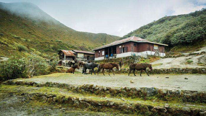 Indian Homestays