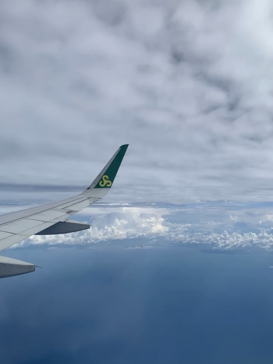 Vande Bharat Flight
