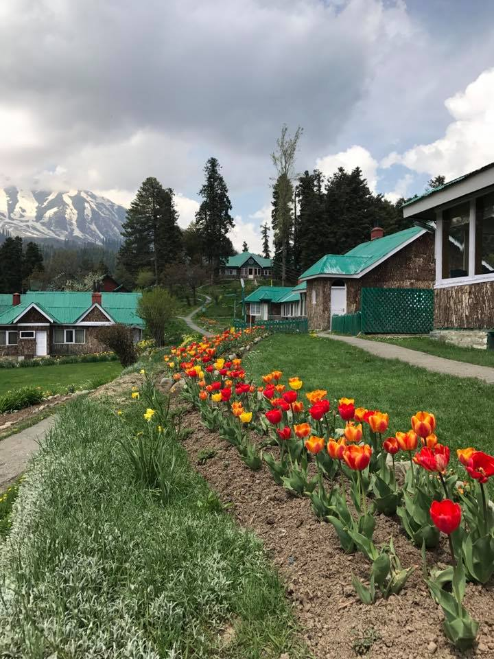 Boutique Hotels Jammu And Kashmir