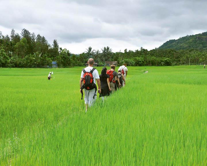 Green Trips Around The World